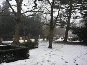 Graveyard in winter.
