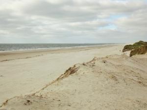 Skallingen beach