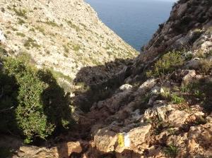 Following yellow trail