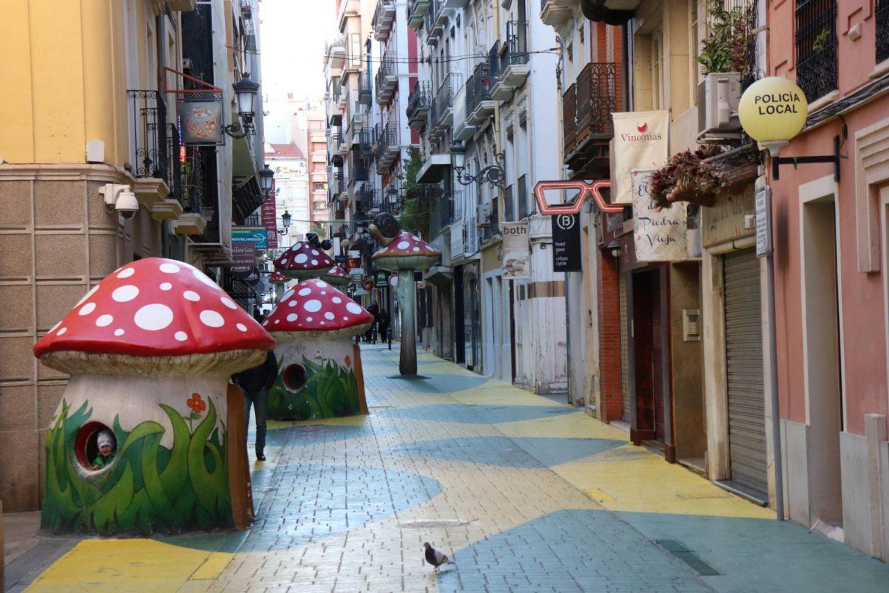 Mushrooms on Calle San Francisco