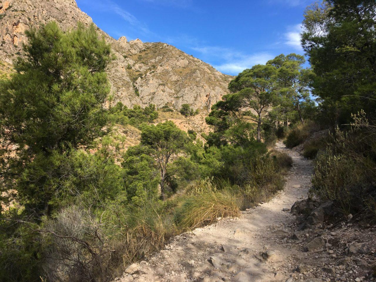 Górska ścieżka, joga i pilates