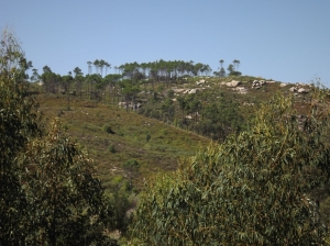 Boulders area
