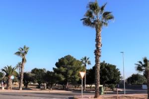 Roundabout.