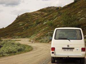 Scenic routes in Central Norway - day 3 2