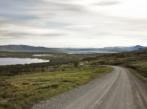 Scenic routes in Central Norway - day 3 24
