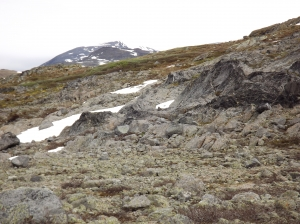 Looking for a glacier in Jotunheimen Nasjonalpark - day 4 6