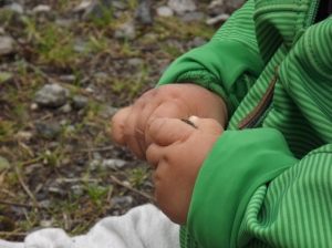 Lodowce odnalezione! Jostedalsbreen Nasjonalpark - dzień 5. 19